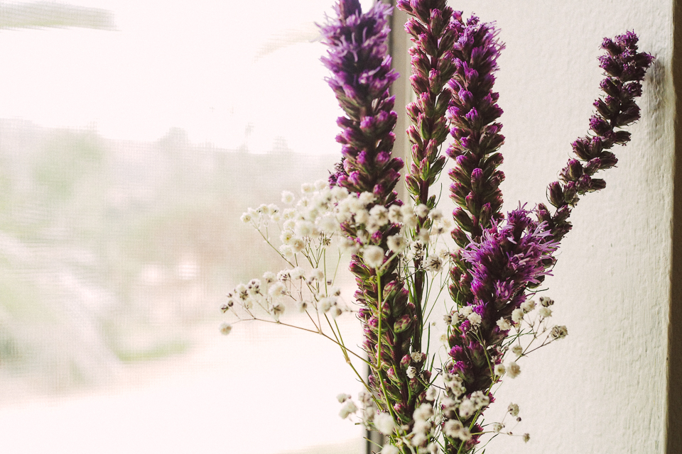 my-pumpkin-flores-secas-3