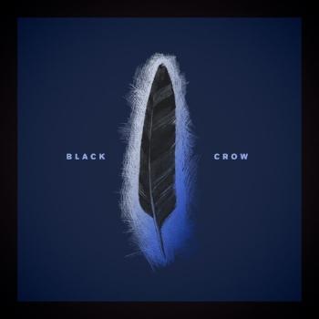 Black Crow.jpg