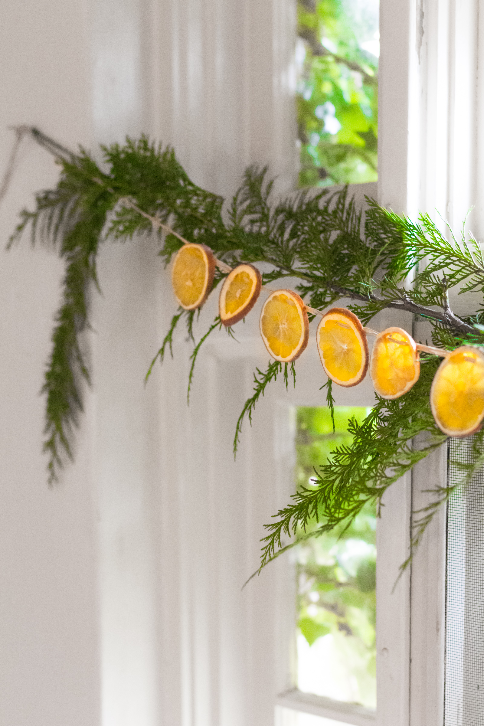 Diy Dried Orange Garland Chloe Rey