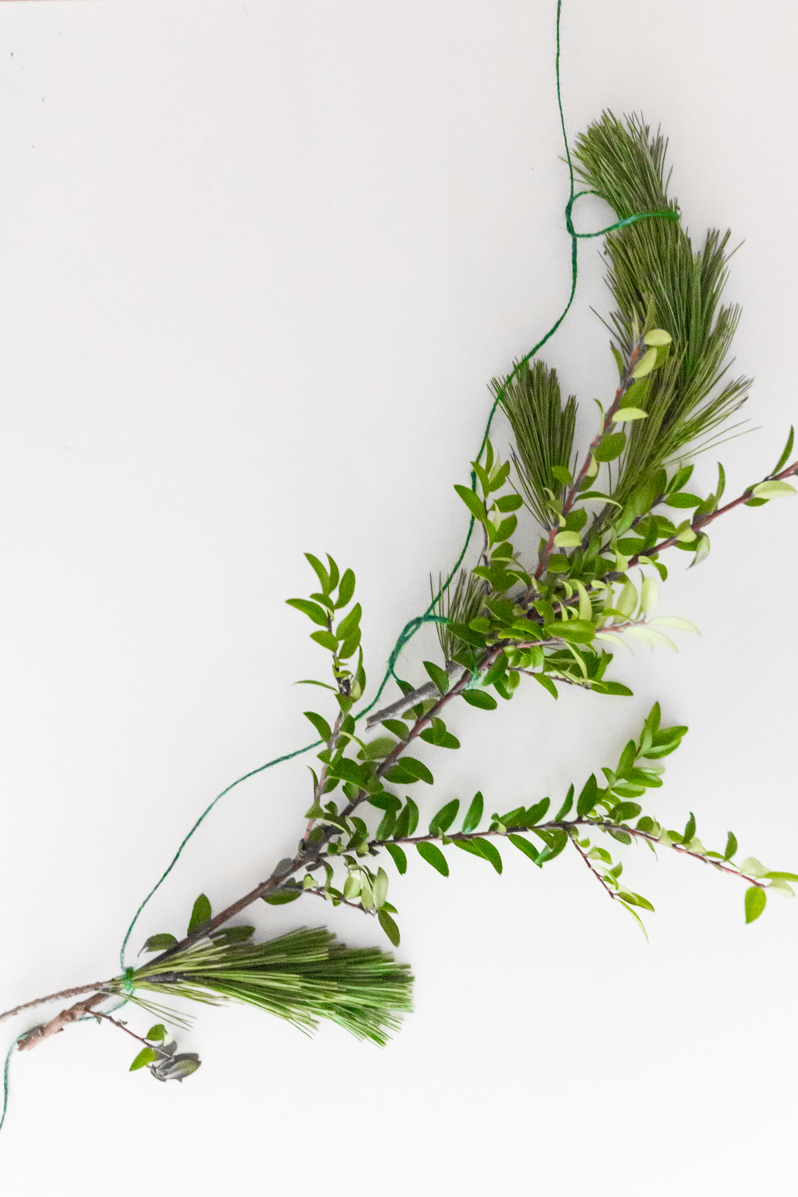 Greenery garland knotted together