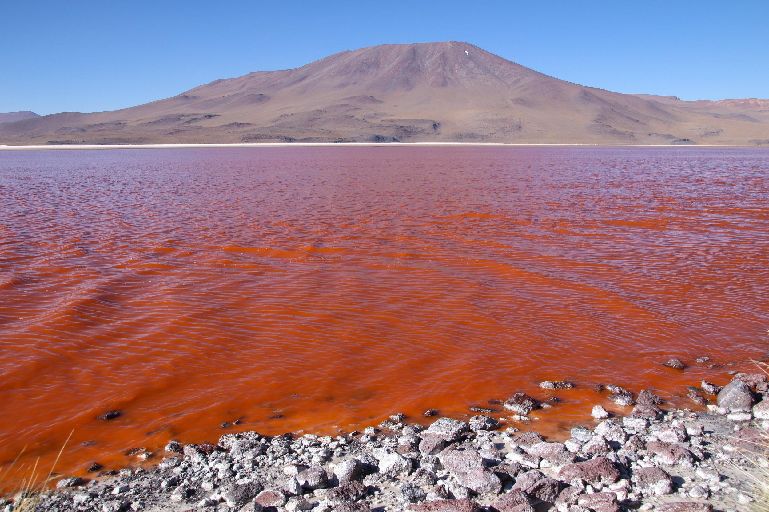 Red Lagoon Bolivia.jpg