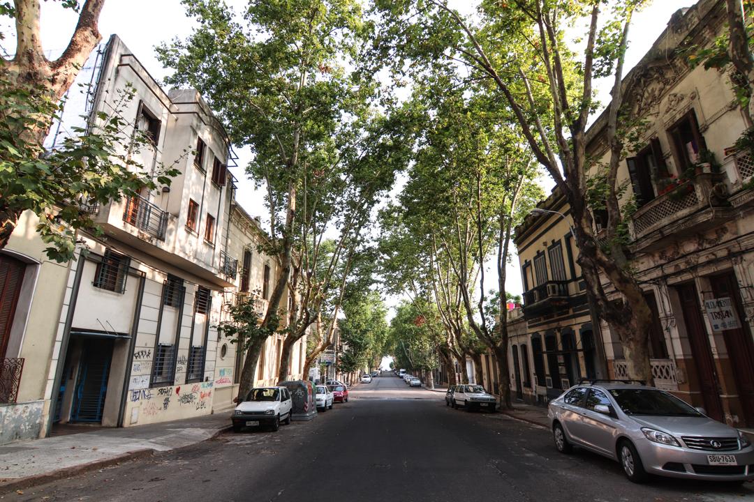 Montevideo Uruguay City Travel
