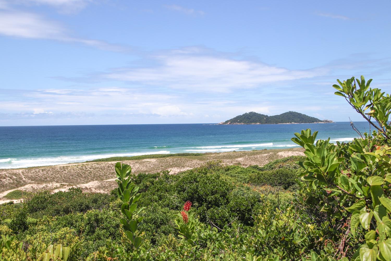 florianopolis-campeche beach-ocean