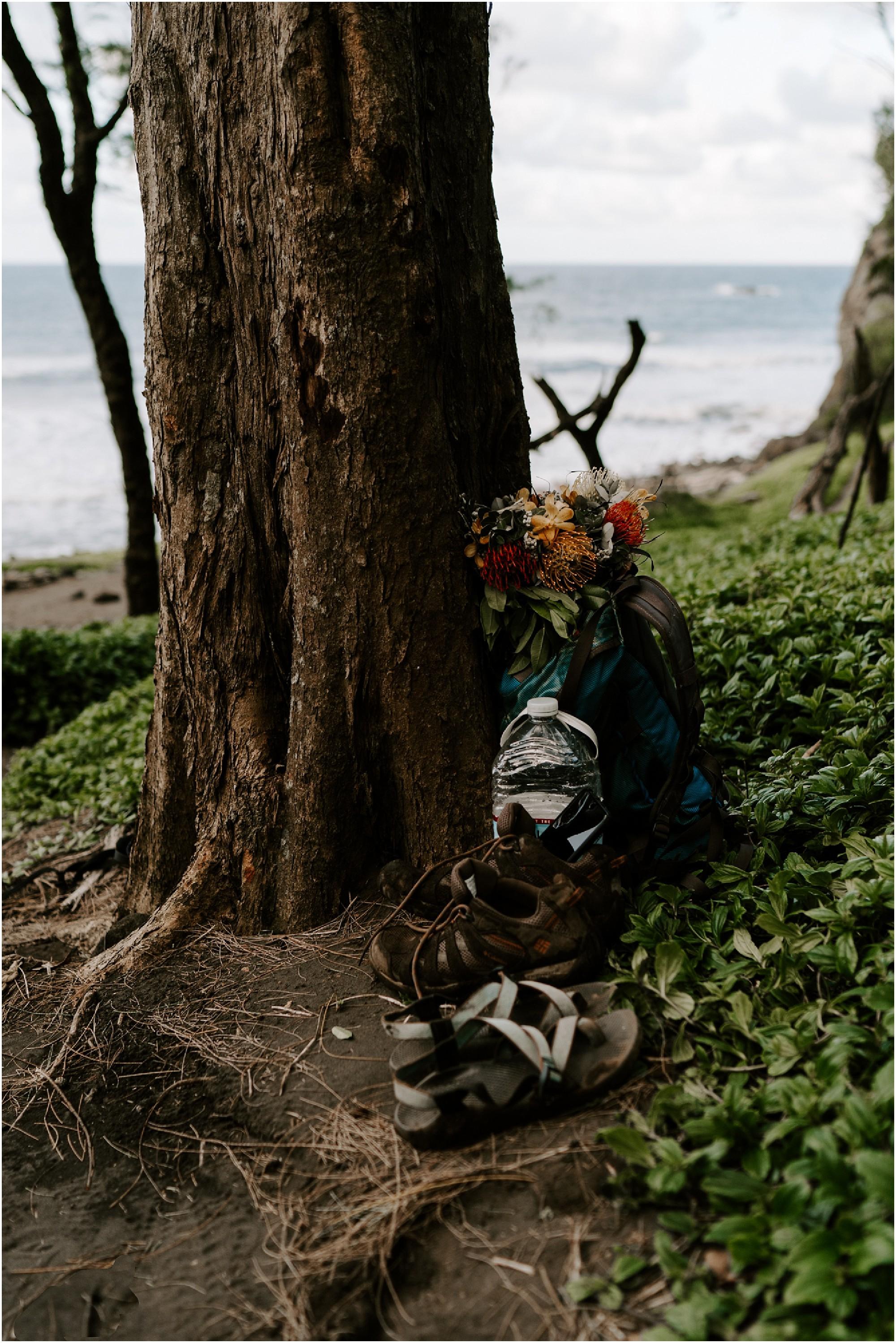 big-island-valley-proposal-hawaii-elopement-photographer_0038.jpg
