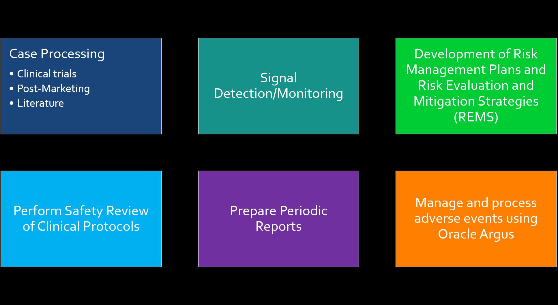 Drug Safety Process