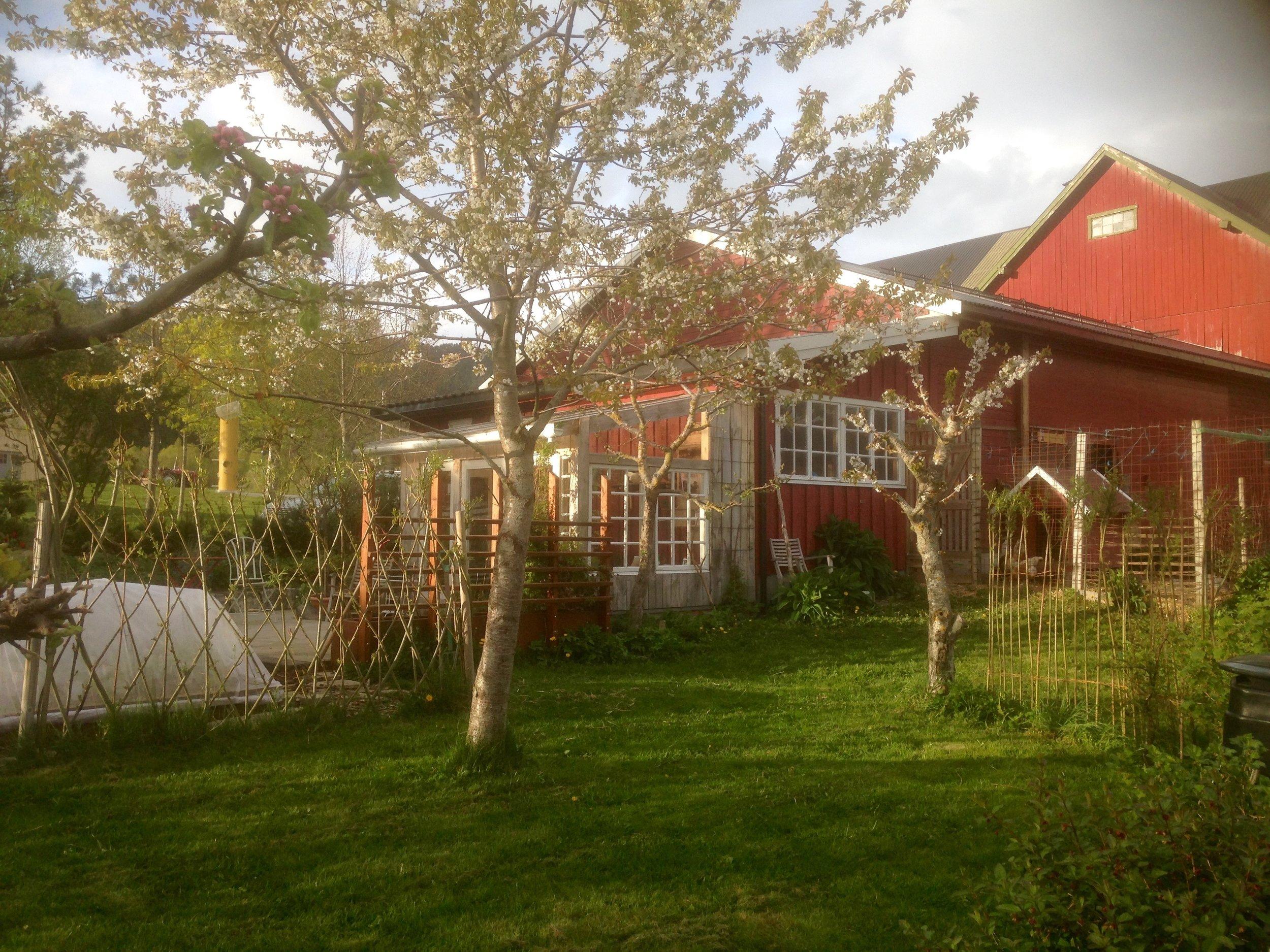 Monsås Hage - uteområde
