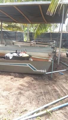 Improvised Hatchery under construction