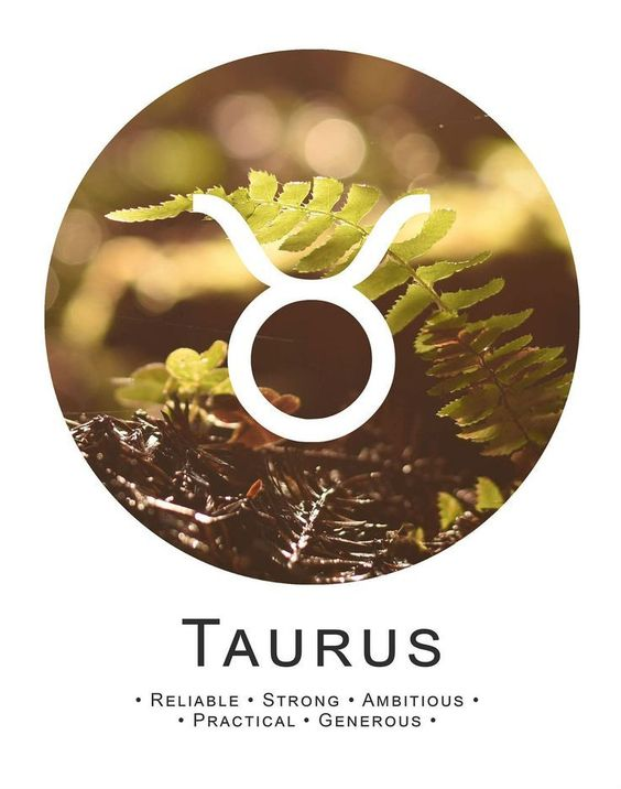 TAURUS THE BULL! - Some people may say you are stubborn and materialistic, but what they don't know is…
