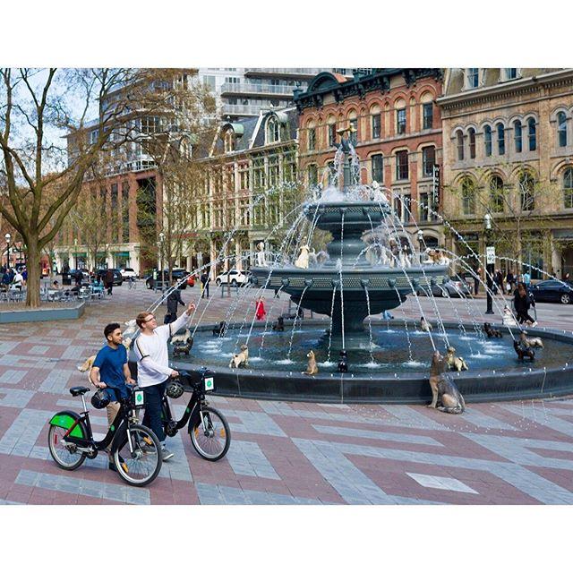 Famous bike models from Paris!? Nope just another Tuesday in Toronto 📸 #bikeshare #bikesharetoronto #dogfoutain