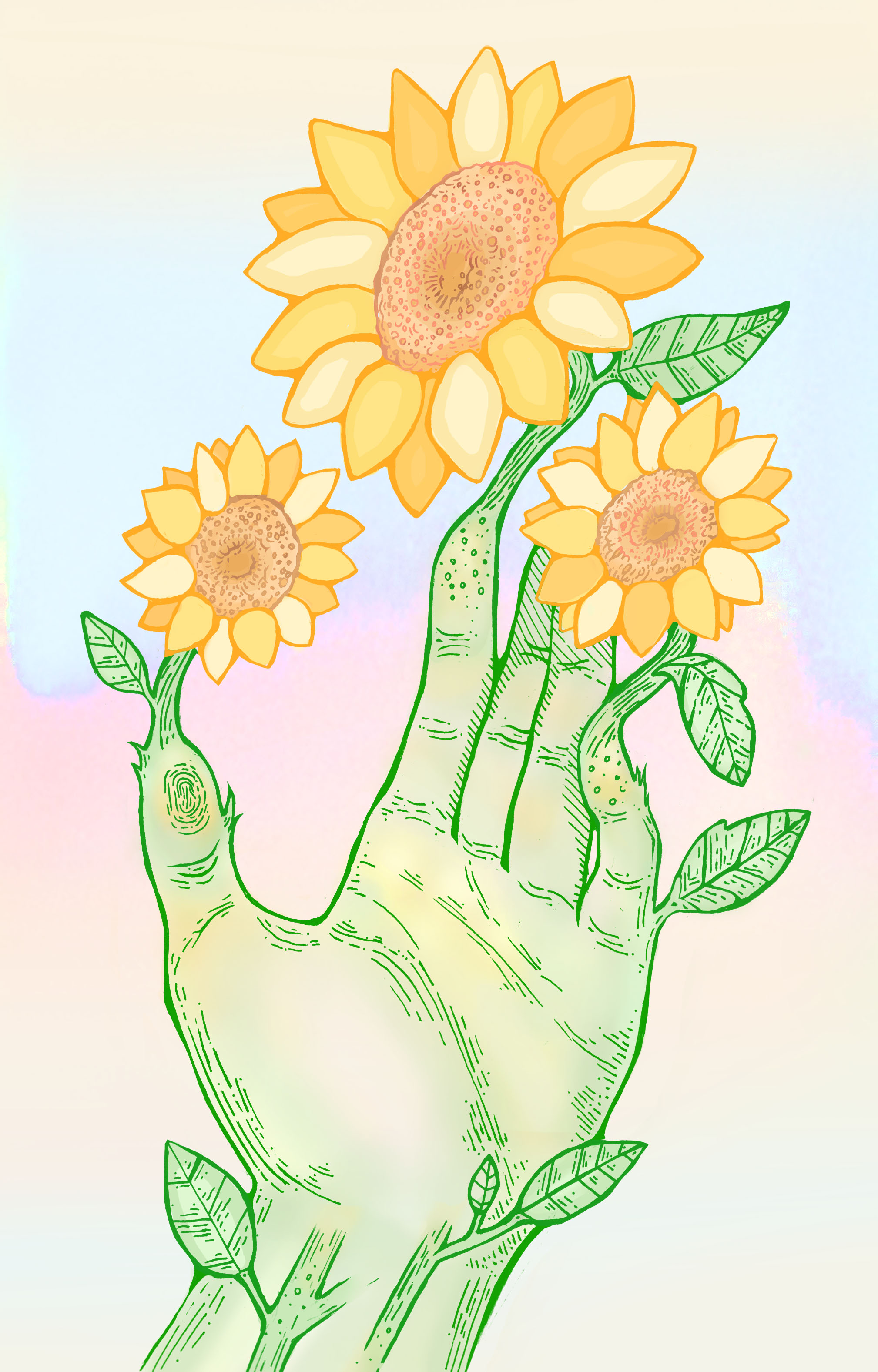 sunflowersisnta1.jpg