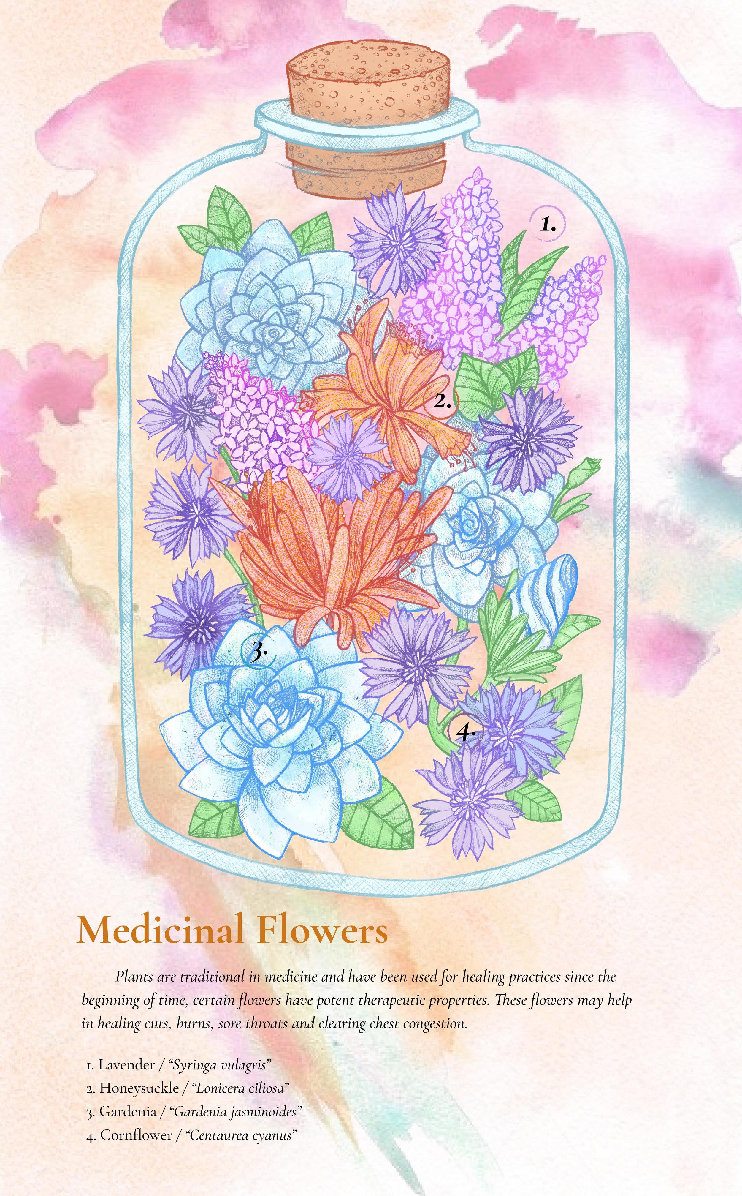 MedicinalBouquet_StephenMcdow1forweb.jpg