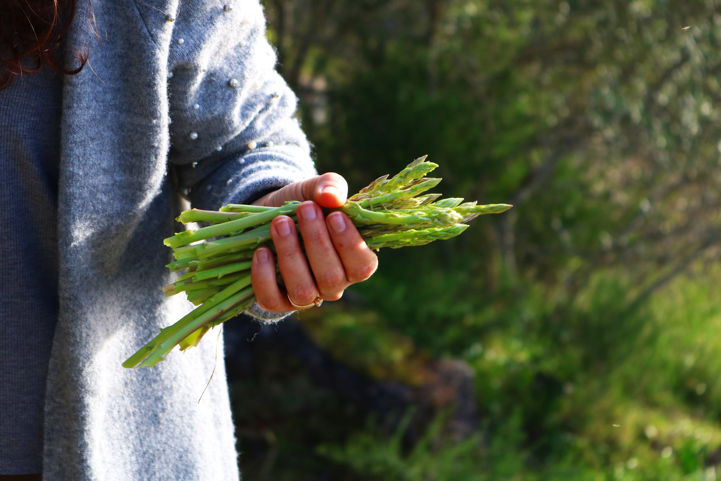 Asparagus is at its peak right now. Enjoy it fresh from local farms and markets.