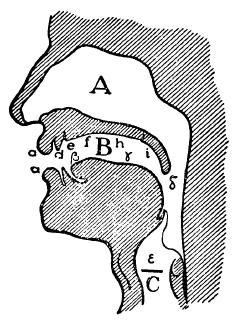 Image: Ferdinand de Saussure, Cours de linguistique Générale (Paris: Editions Payot & Rivages, 1916)