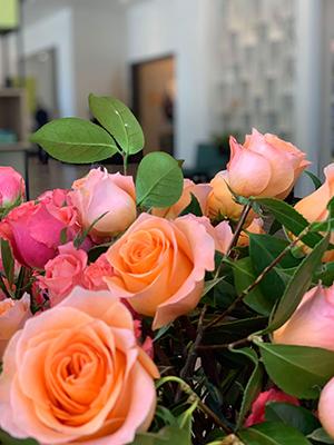 Portland roses_300w.jpg