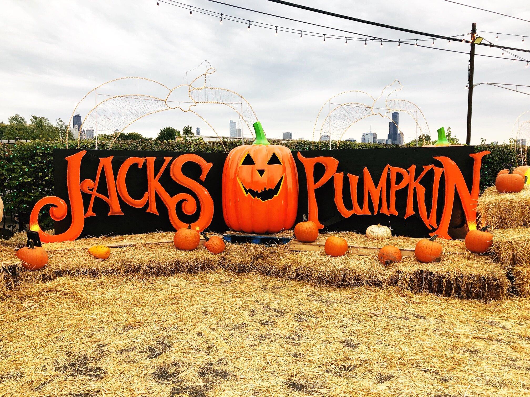 Trip-Sisters-Colleen-Kelly-Catie-Kehoe-Jacks-Pumpkin-Halloween