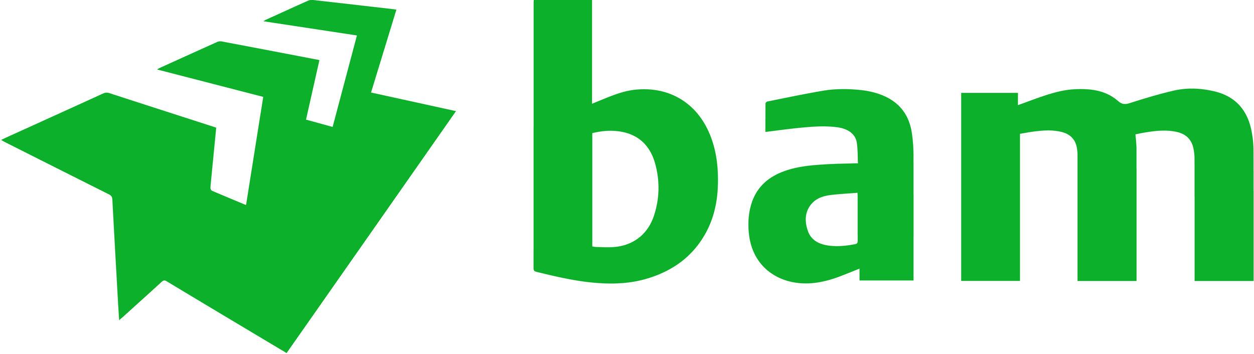 BAM Master-Logo_Green RGB-01.jpg