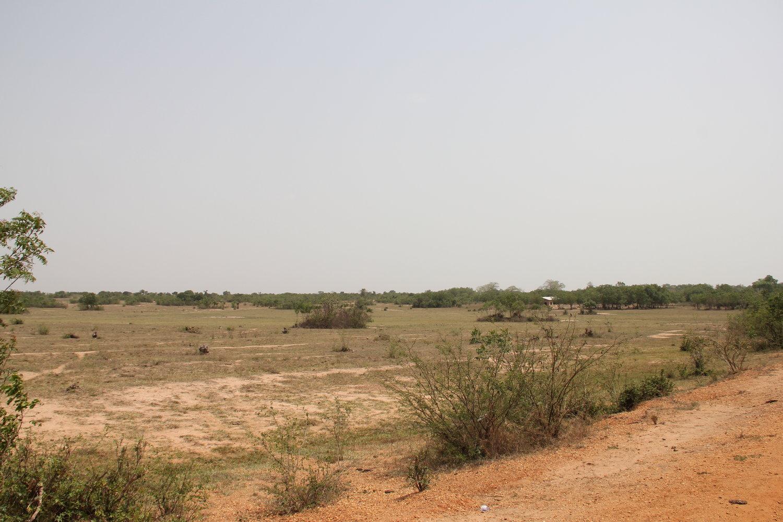 Site+of+the+Solar+Farm+Project+4.JPG