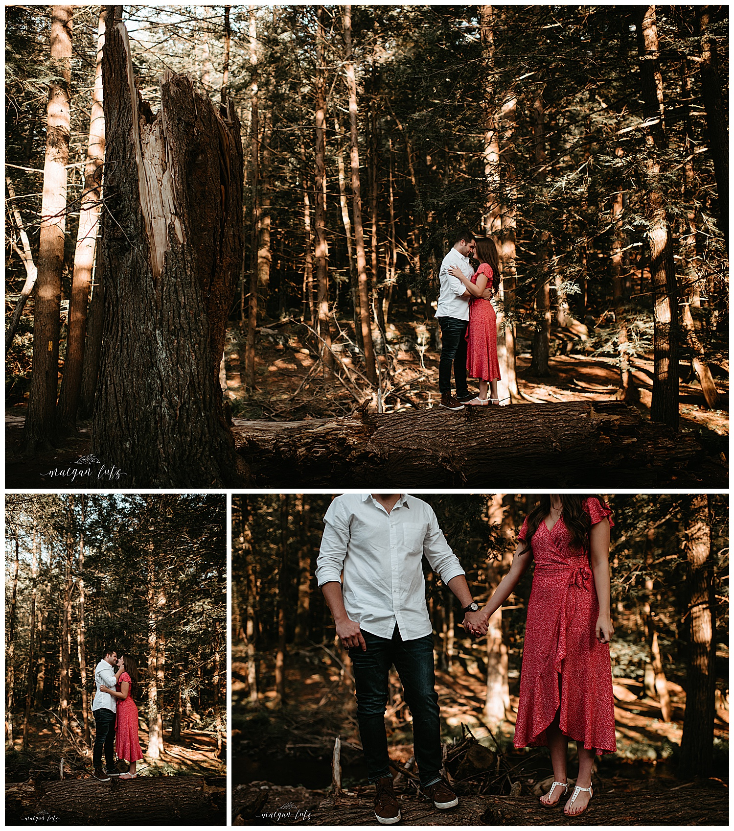 NEPA-Mount-Pocono-Lehigh-Valley-Wedding-Engagement-photographer-at-Hickory-Run-State-Park-Whitehaven-PA_0004.jpg