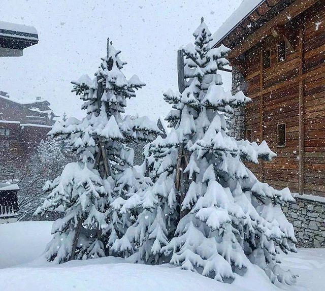 V A L D I S E R E 🇫🇷 est. 12 cm fresh snow delivery