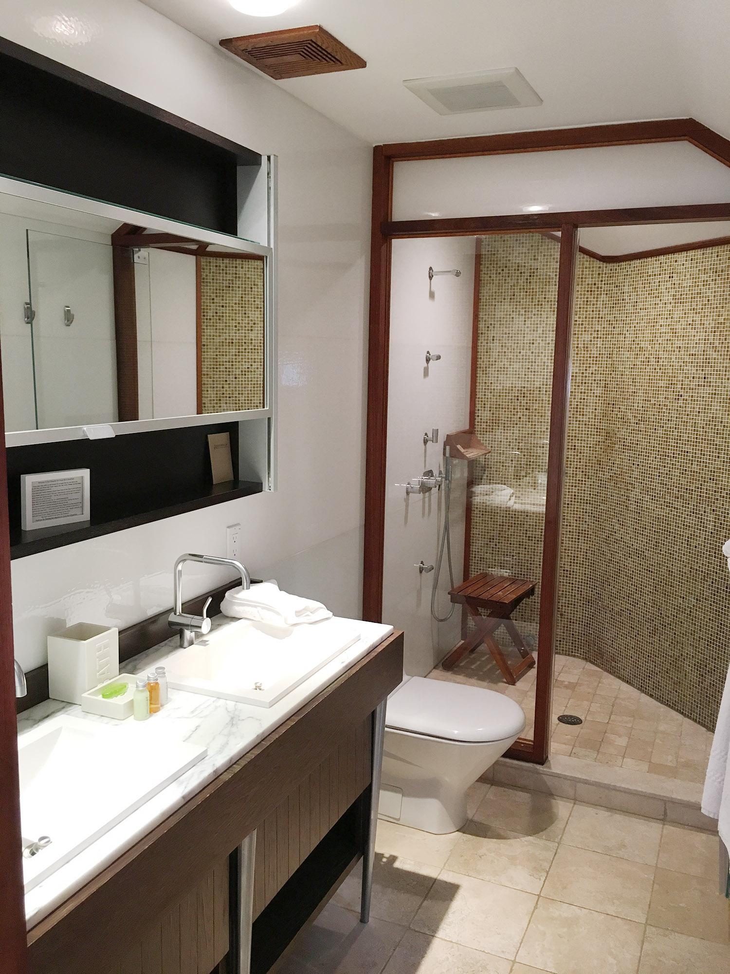 Master Guest Bathroom