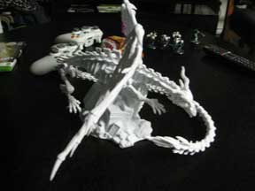 bones2_03.jpg