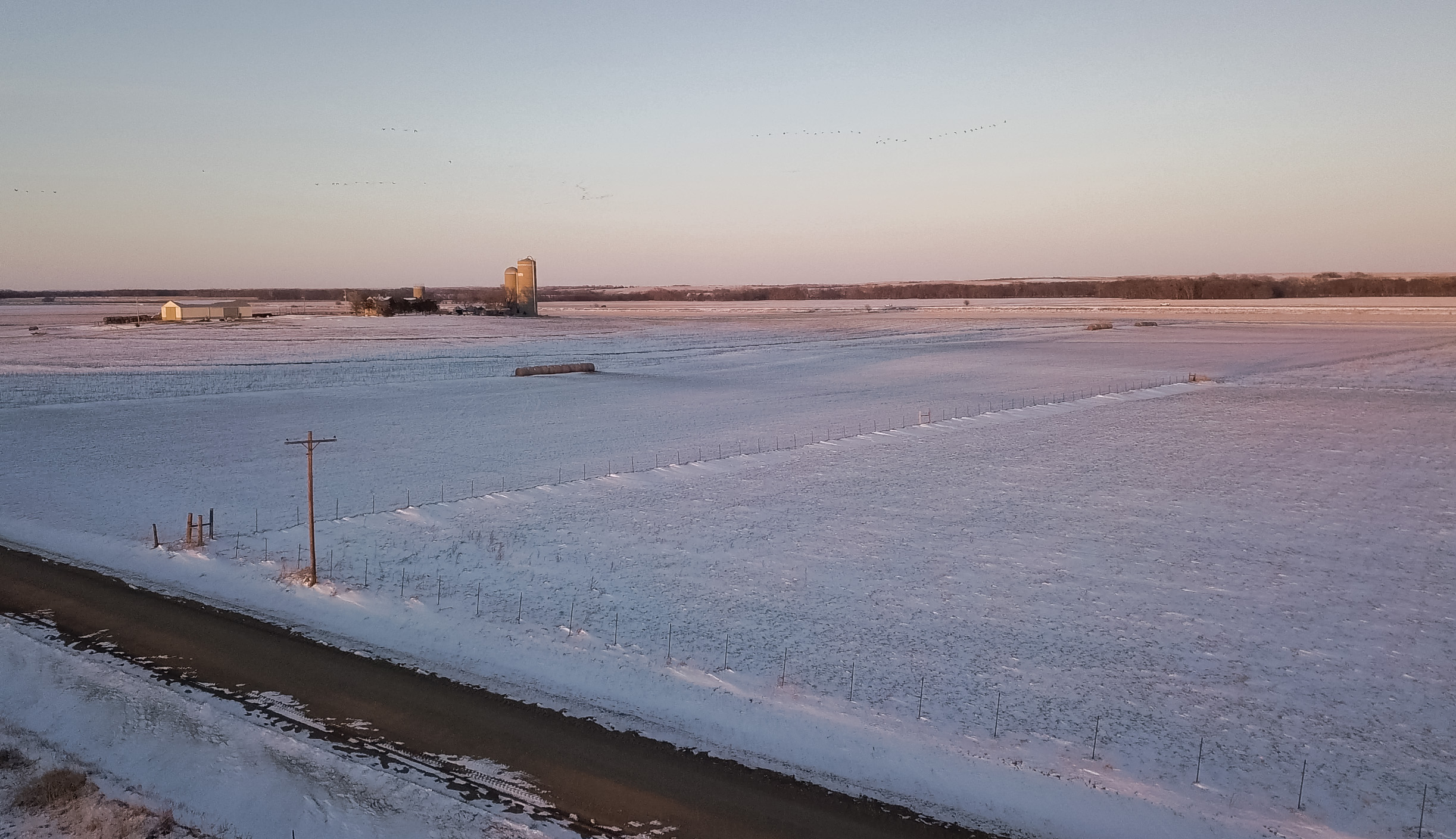 March snow and subzero windchills made spring calving a challenge for many area producers