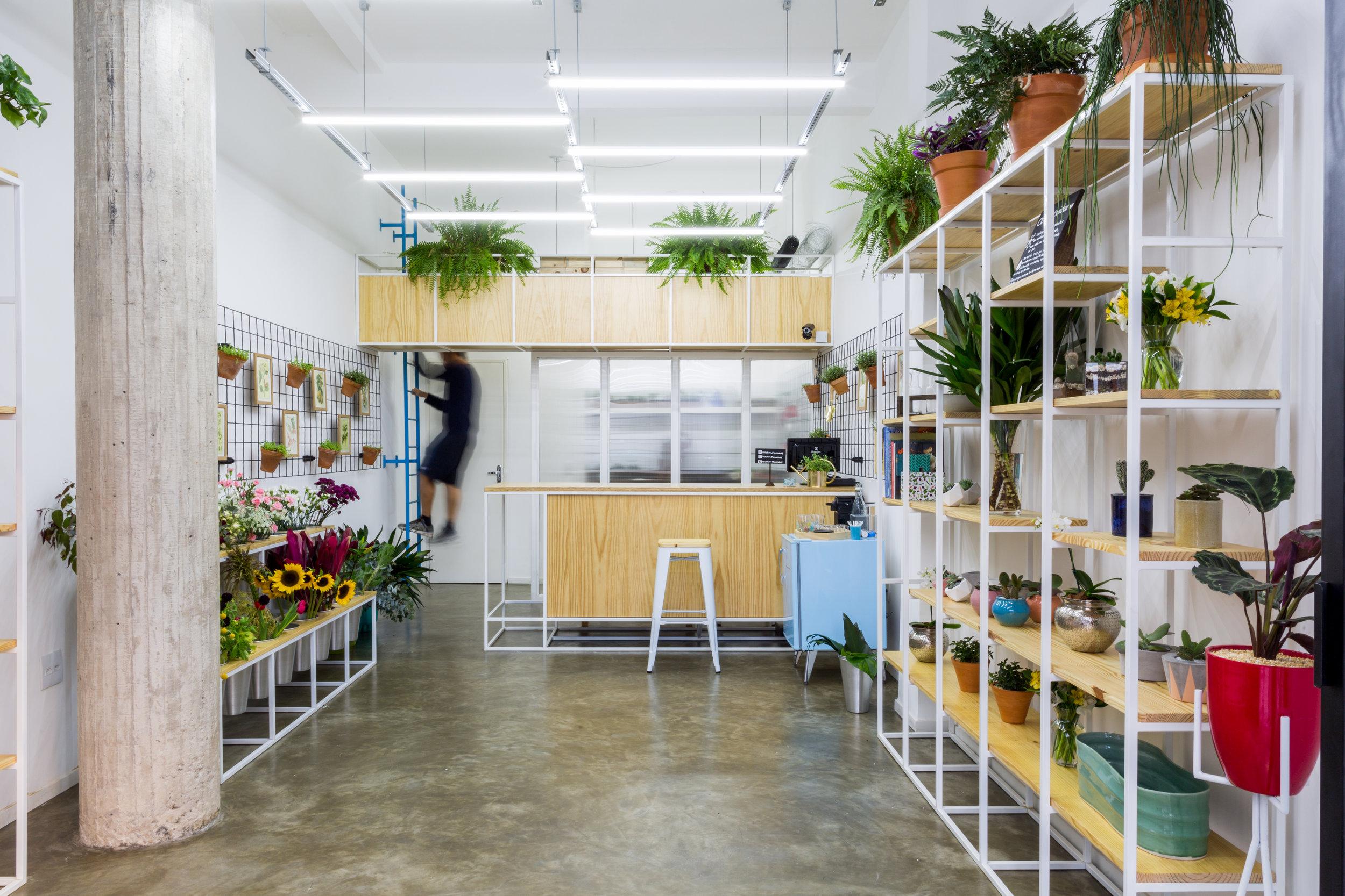 Trifolium Flower Shop  São Paulo | São Paulo | Brasil