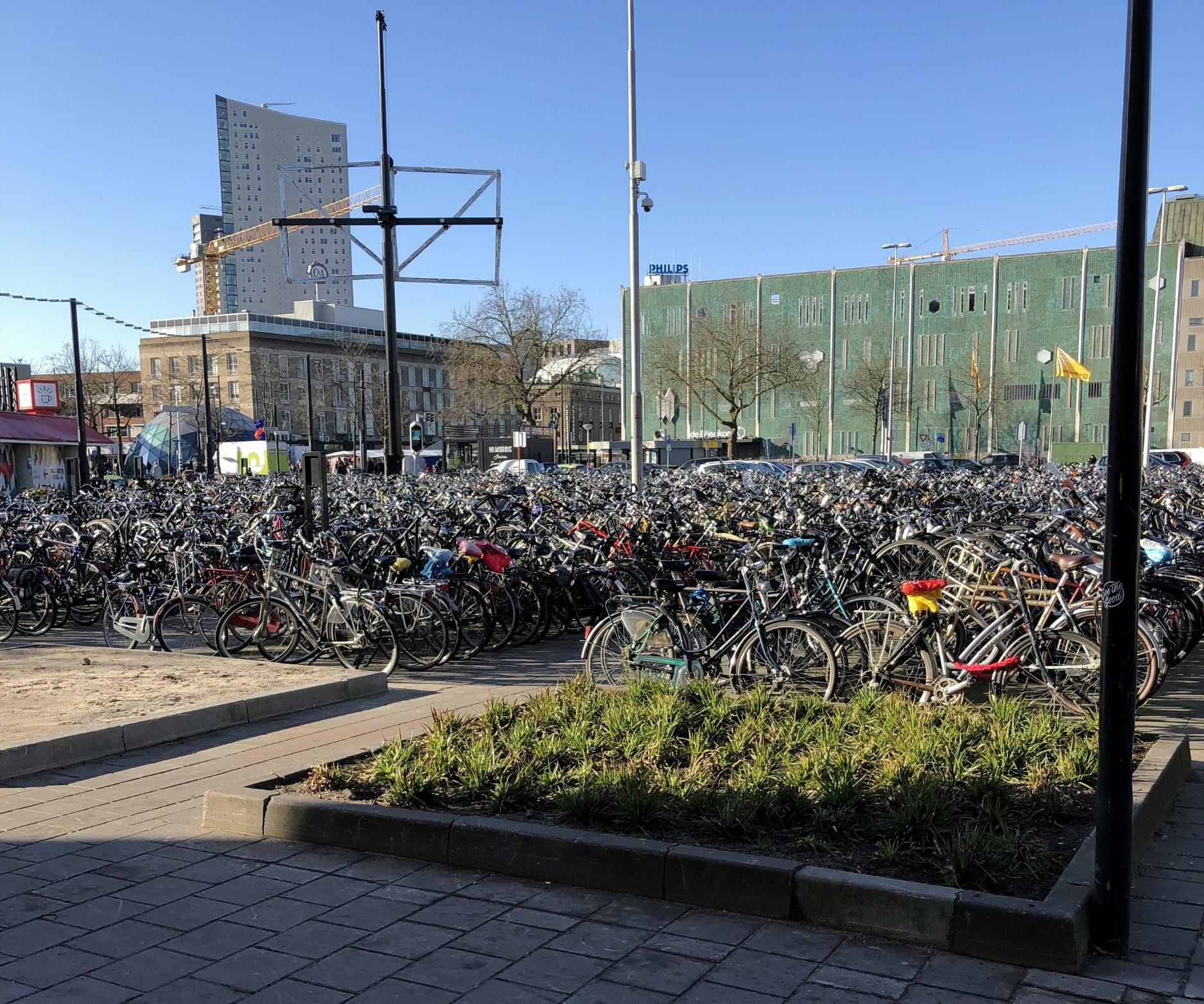 Eindhoven & The Netherlands are very bike friendly - photo by Travis Stewart