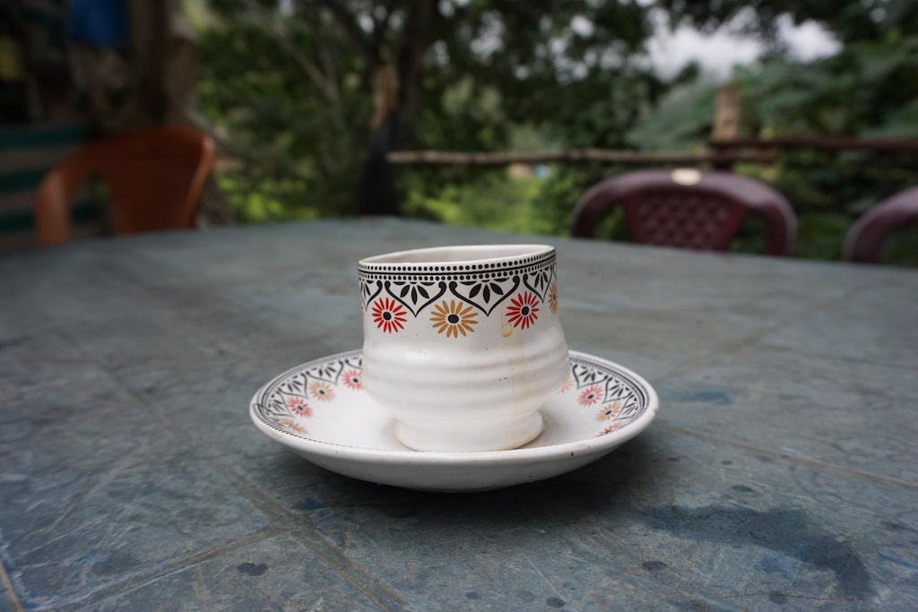 tea-nature-travel