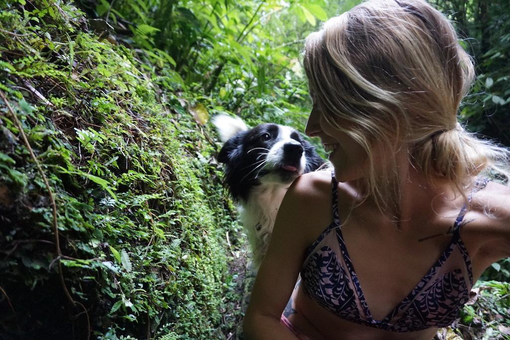 dog-love-travel