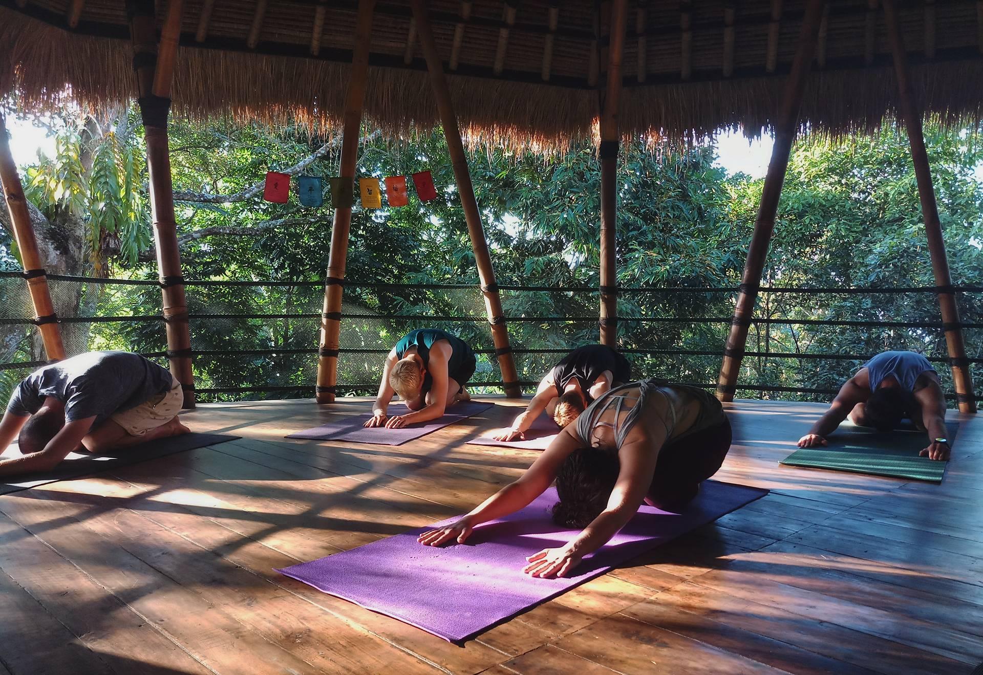 yoga-nature-travel