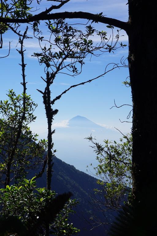 nature-bali-trekking