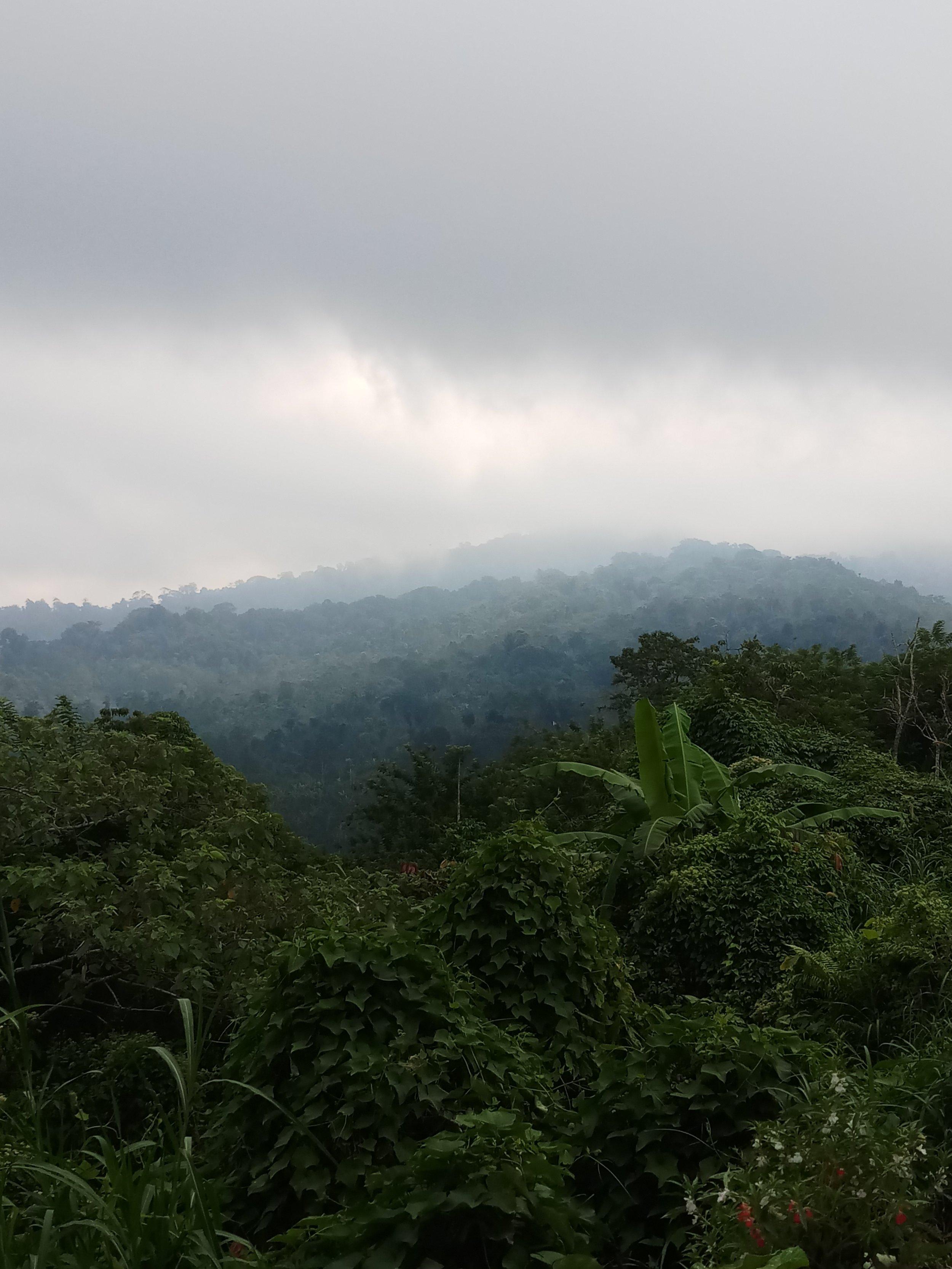 bali-indonesia-travel-nature