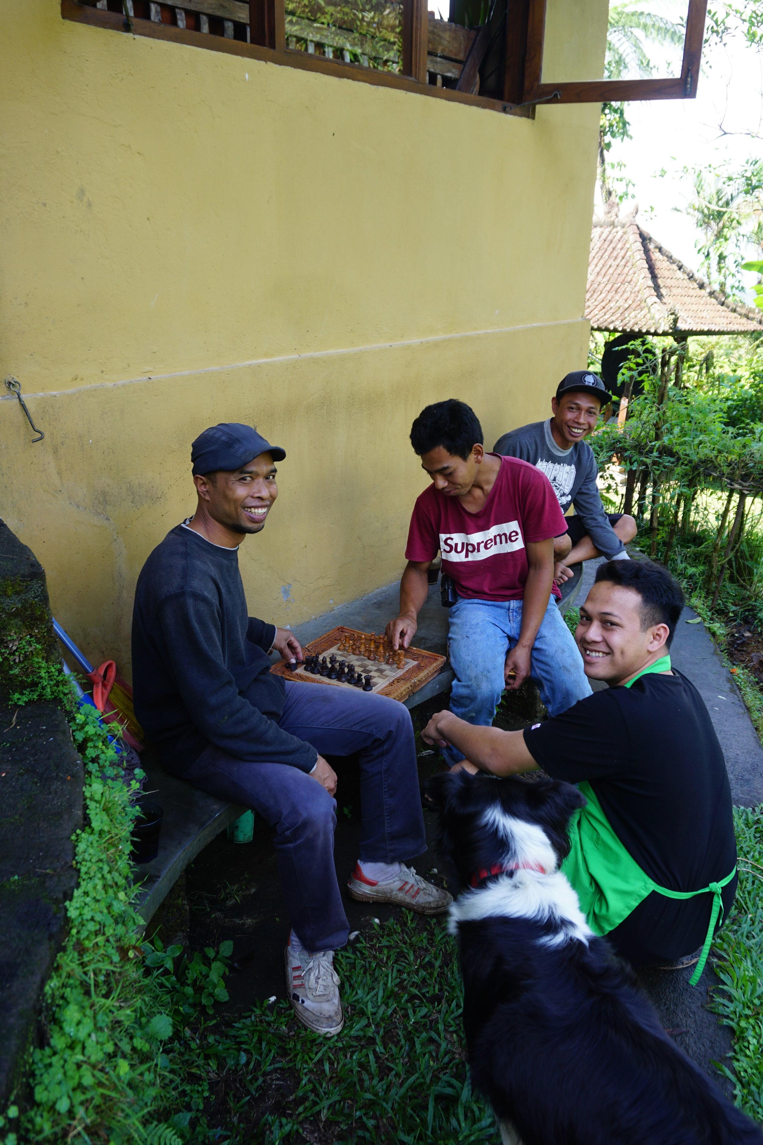 bali-ecolodge-travel