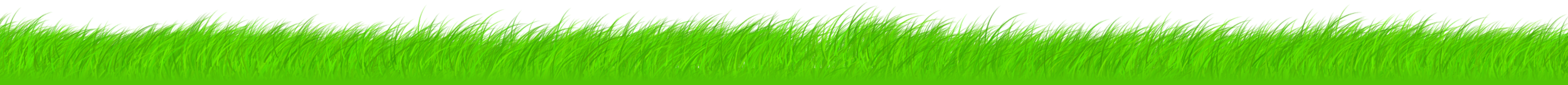grass-w2500.png
