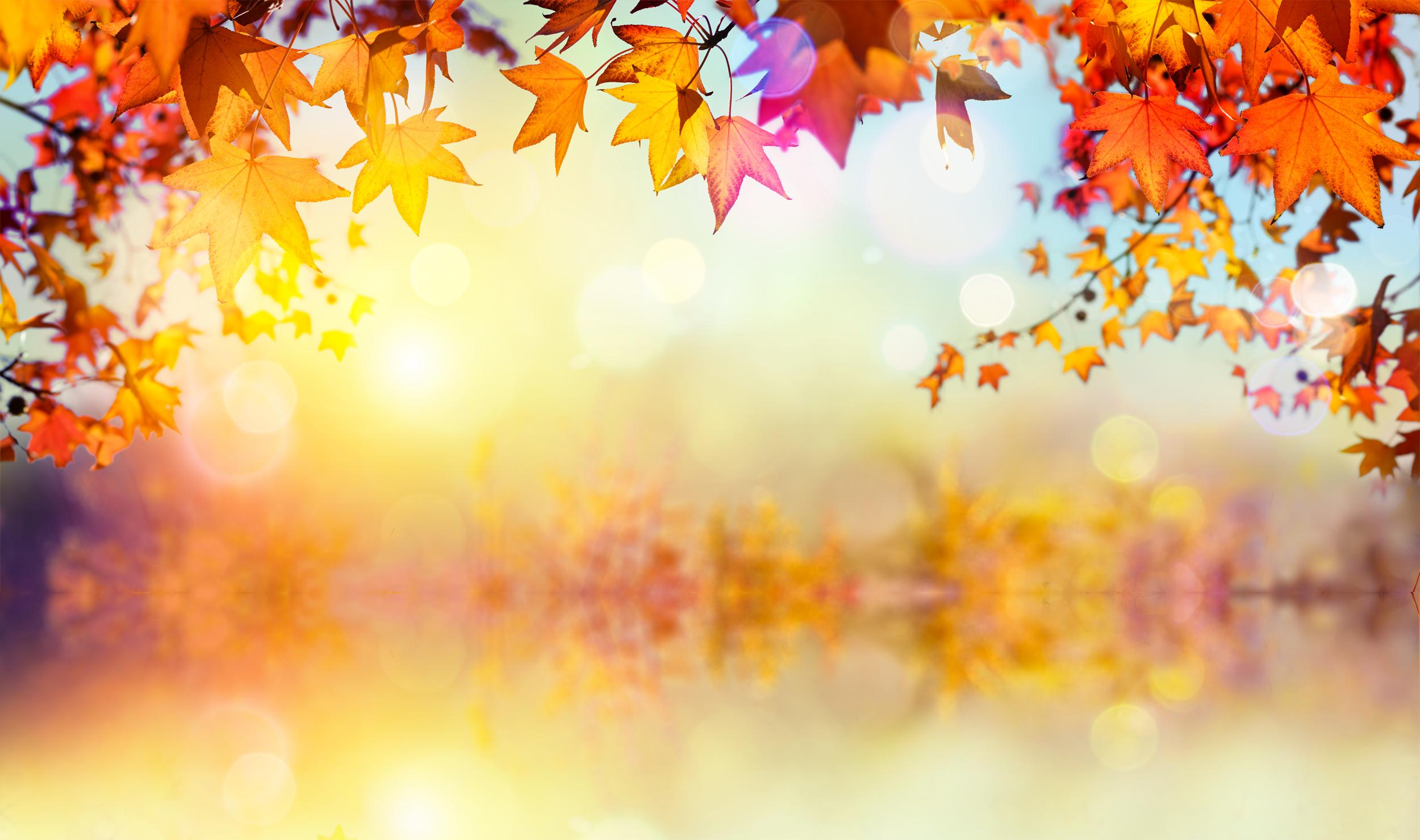 fall-at-the-lake-v2.png