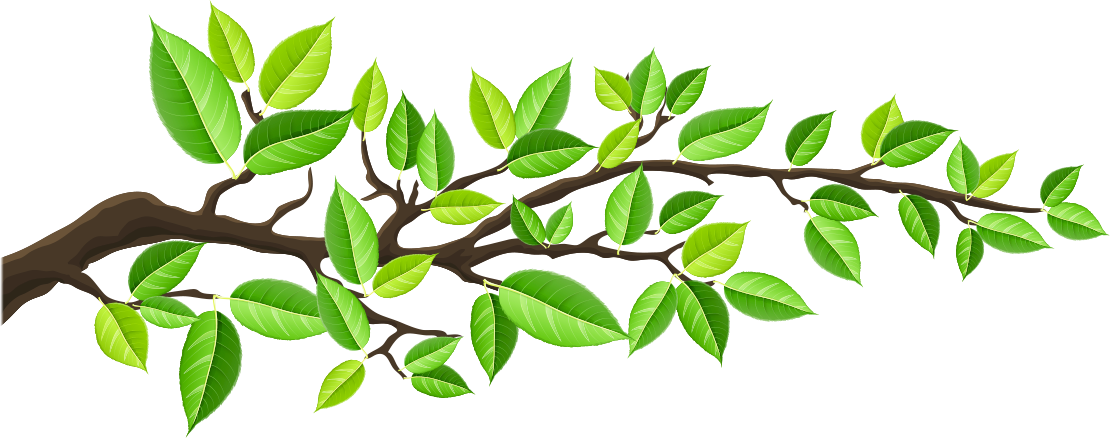 green-branch.png
