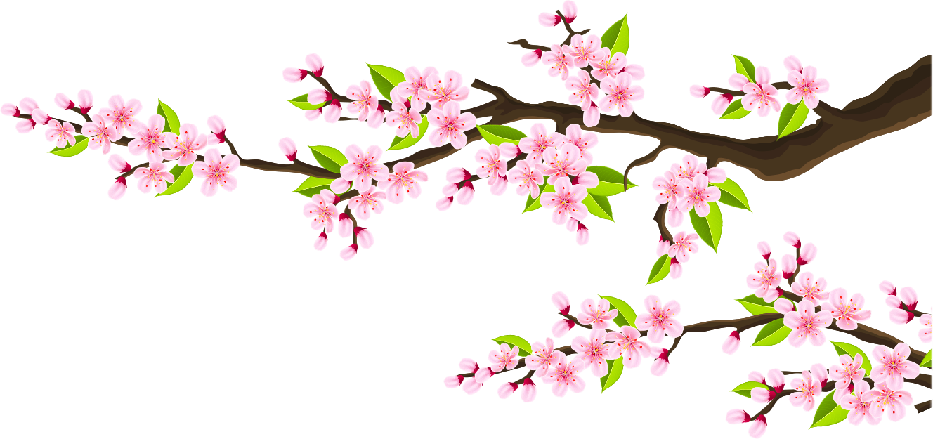 pink-flower-branches.png