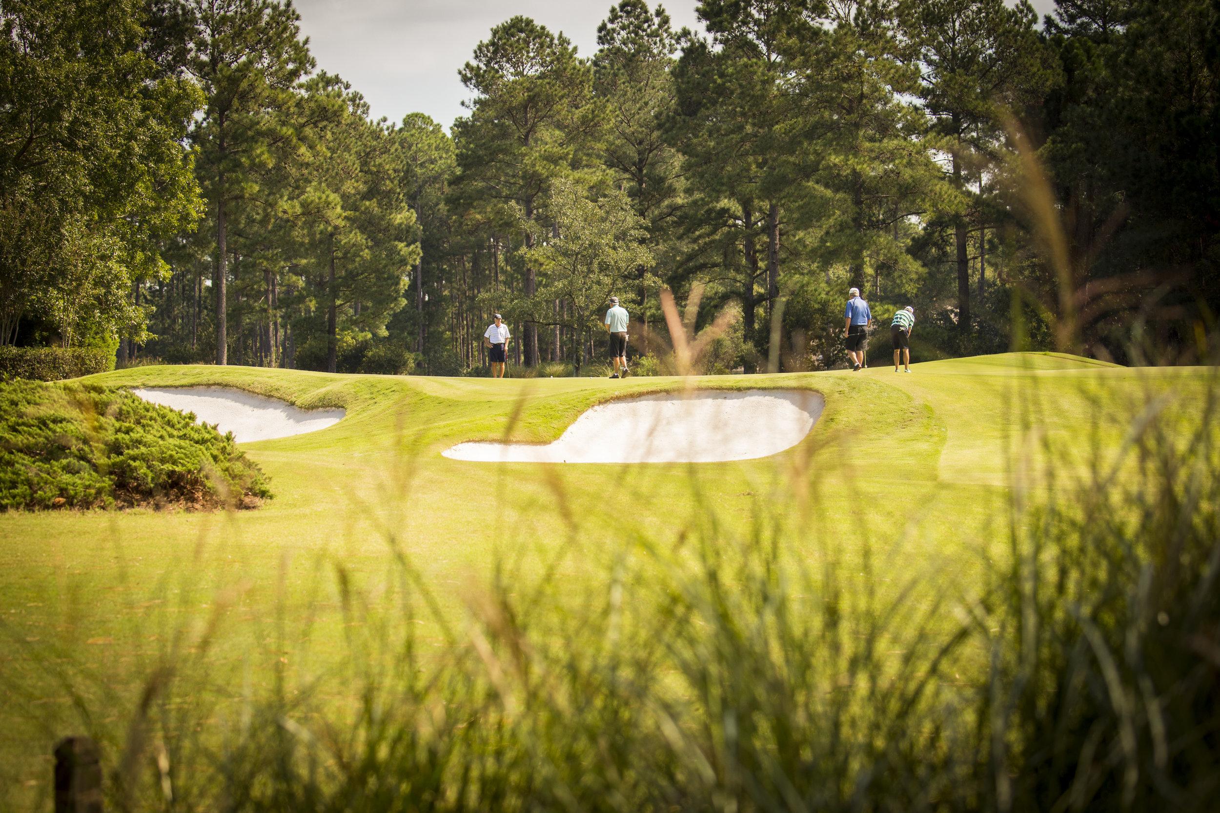 men golfers Long Shot (2).jpg