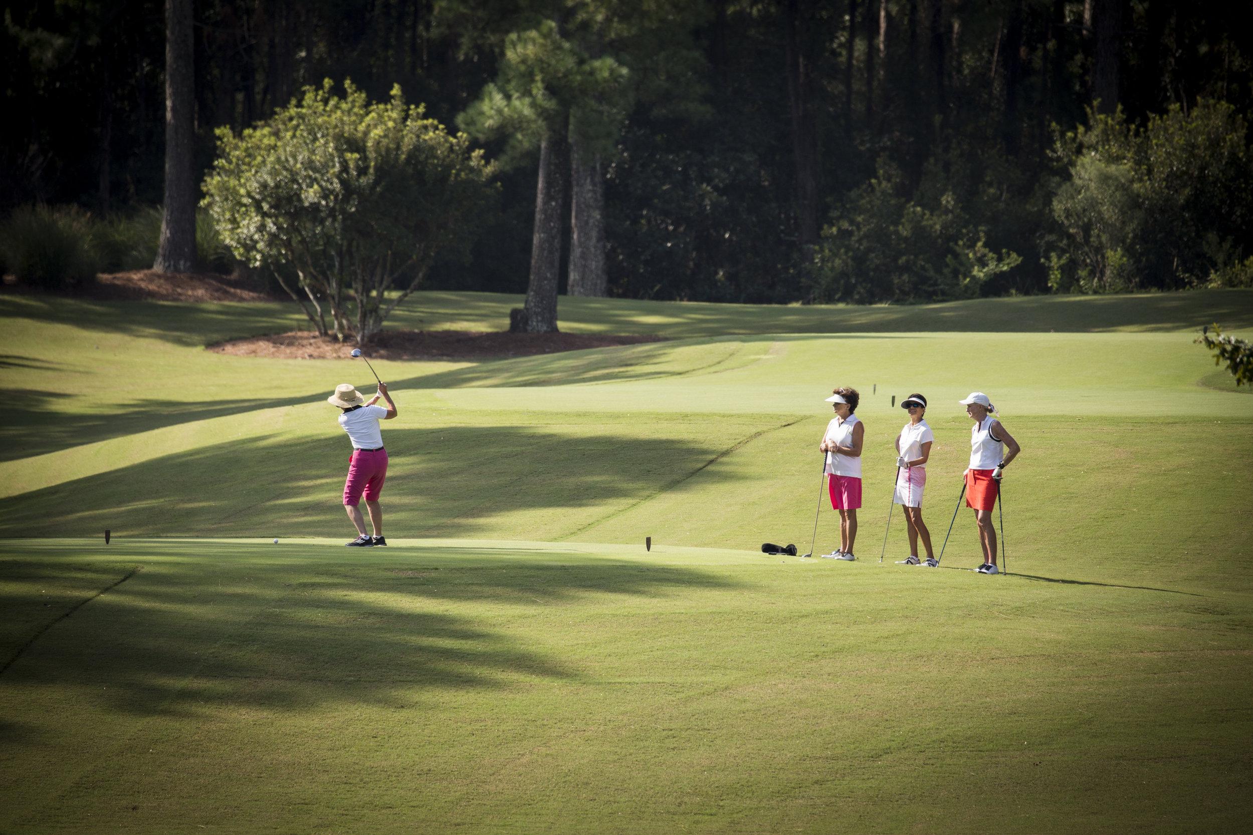 women golfers Long Shot.JPG