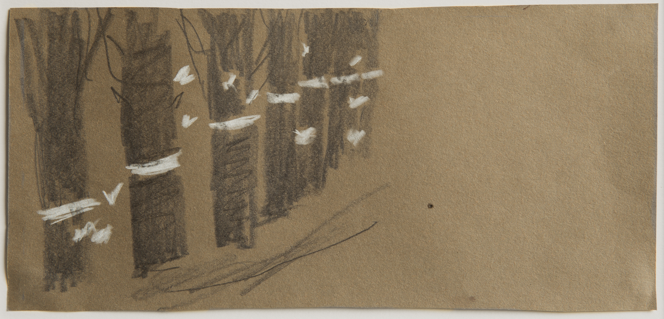 Mary Newcomb (No Frame).jpg