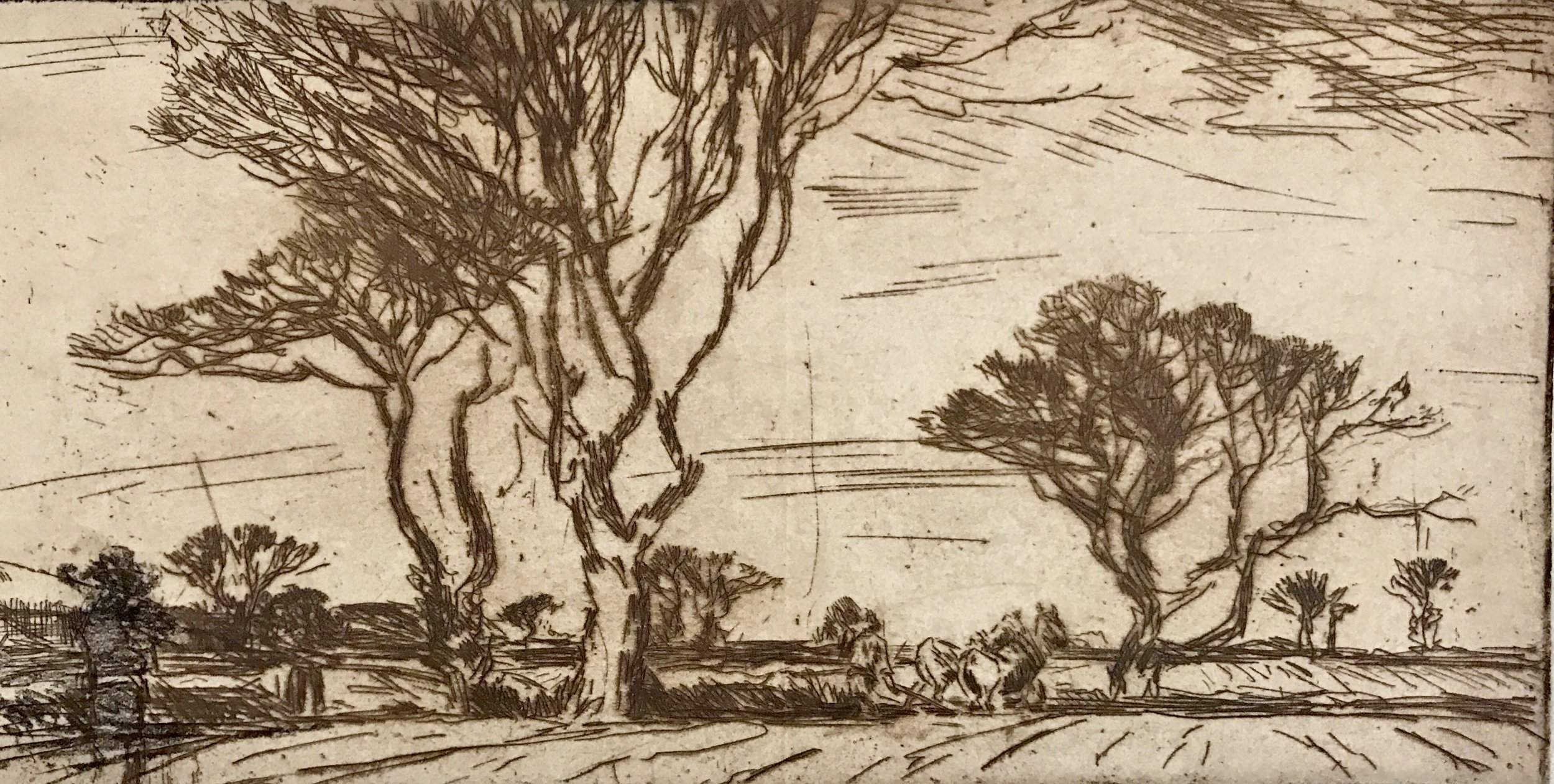 Harry Becker .  Distant Plough Team in Tree Lined Landscape , c.1910s. Etching on paper.