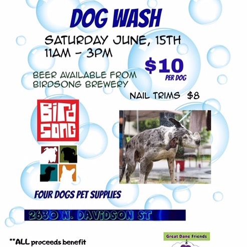 Dog wash benefit for Great Danes Freinds of Ruff Love! This Saturday 11-3, @greatdanefriends @birdsongbrewing @nodabarkandboard @nodaclt