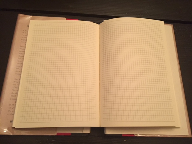 Graph paper used inside the secret diary journal - large size.