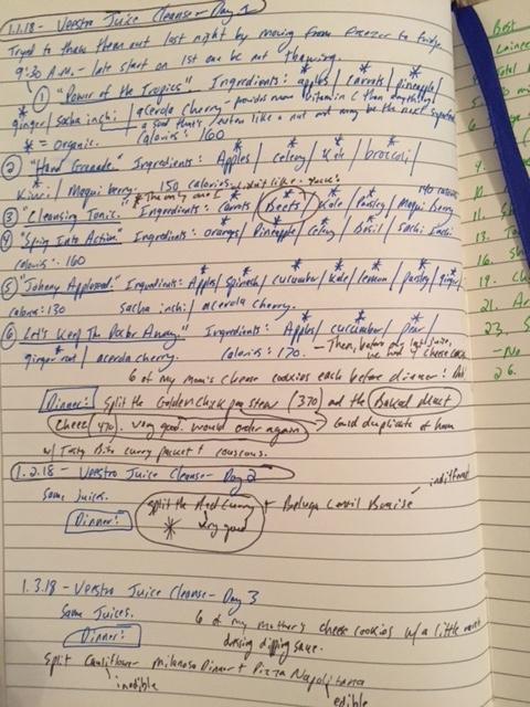 Veestro Notes.JPG