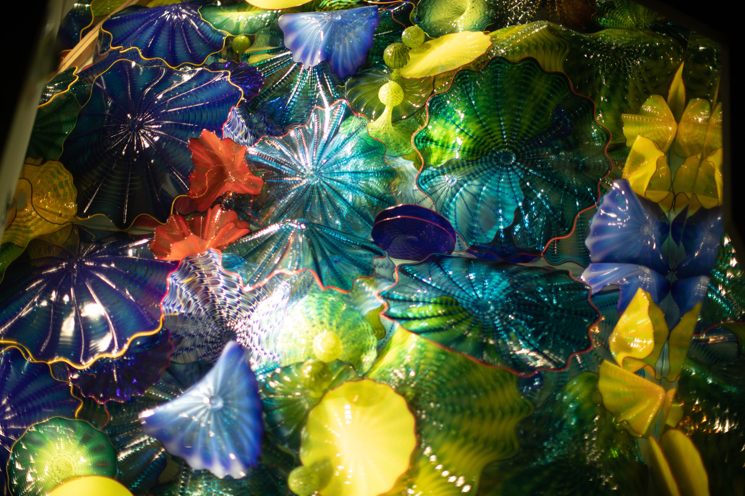 One of our two Dale Chihuly installations on campus.