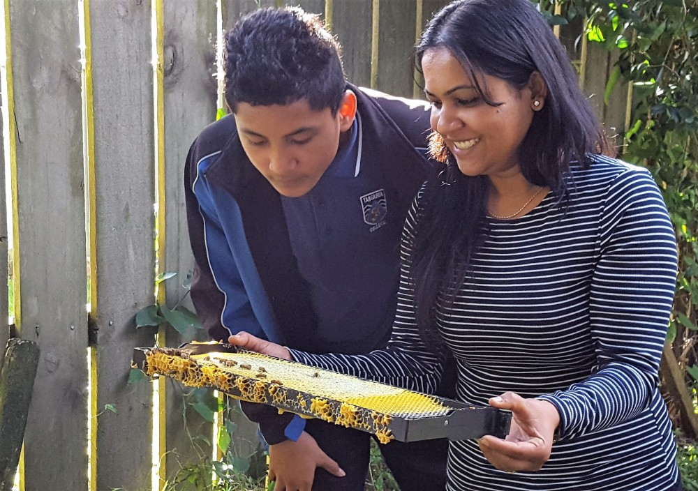 The South Auckland Bee Project -