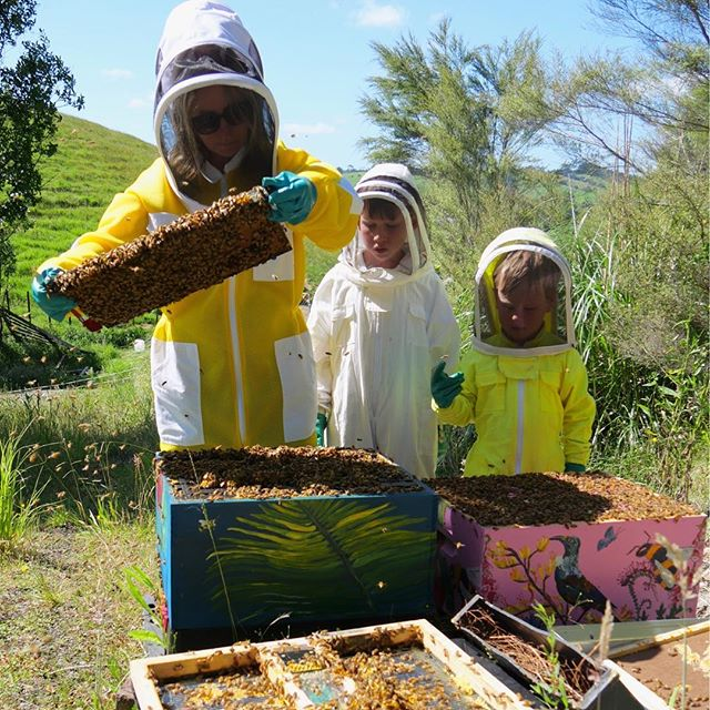 This is a photo of Victoria and her bees sent to us by @buzztech_apiculture who gifted her a inhive sensor as part of our beemonth competition this year. This hive sensor was designed by #julianmccurdy to help us study bees so we can learn what we do that either helps or hinders them. We are so grateful to the business and communities who choose to collaborate together to help make our ecosystem safer and more resilient. We look forward to more pollinator friendly colabs in 2019 . If you want to begin using a buzz tech sensor to study your hives message Julian. #urbanrenewal #pollinatorsanctuary #citybeecollaboration #citysafeforbiologicalsystems #citysafeforbees