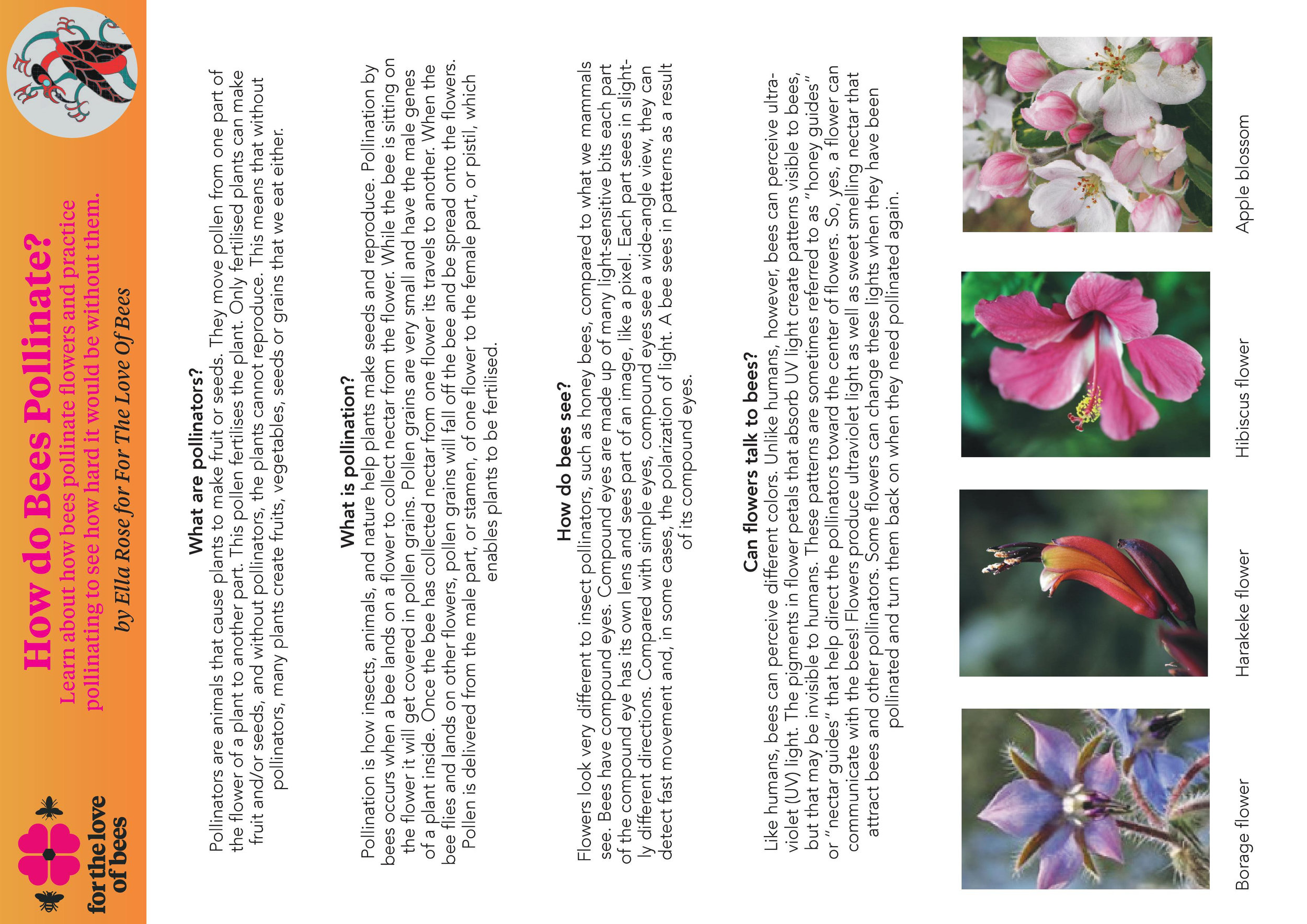 How Do Bees Pollinate Toolkit