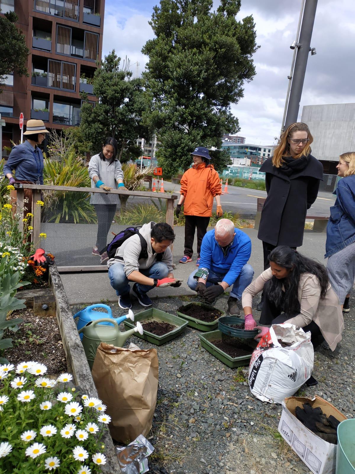 Daldy Street Community Gardens -